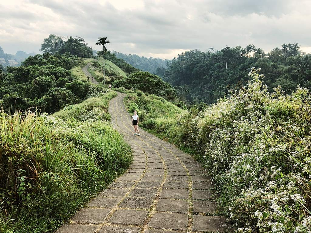 Campuhan Ridge Walk in Bali